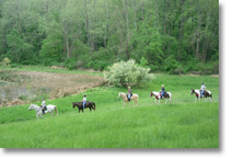 outdoor recreation horseback riding