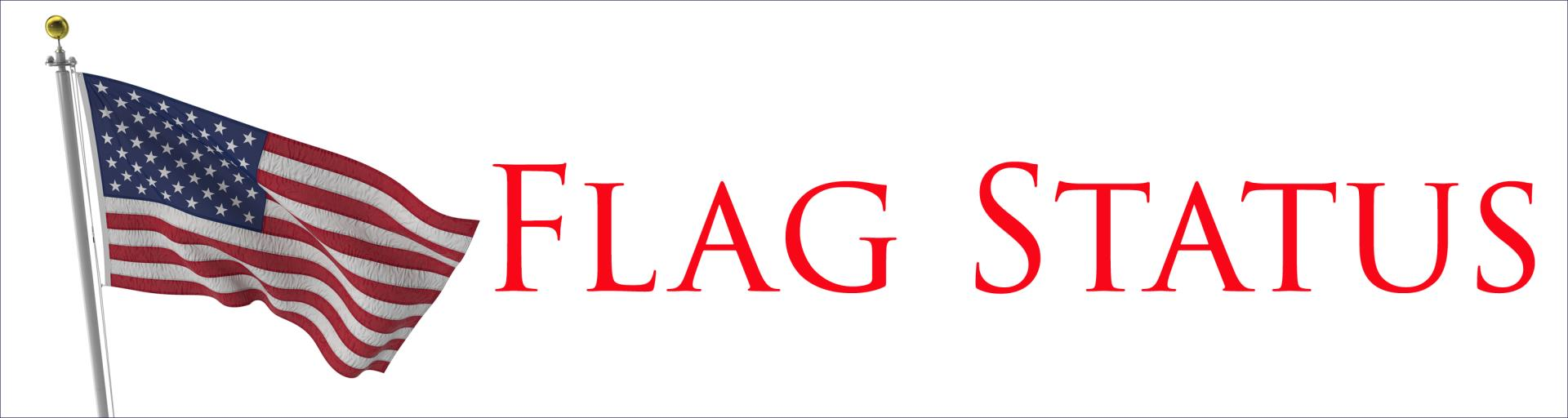 Flag Status